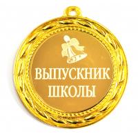 Медали для Выпускников - Медаль выпускник школы (БД)